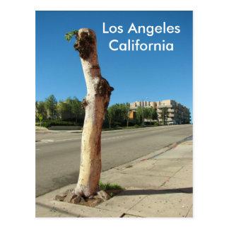 Cartão legal da árvore de Los Angeles!