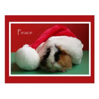 Cartão legal da cobaia do Natal