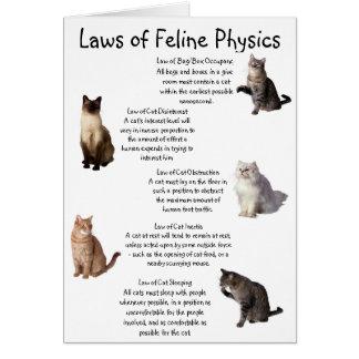 """Cartão """"Leis da física felino """""""