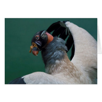 Cartão Levantando o abutre