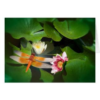 Cartão Libélula Lotus #4488