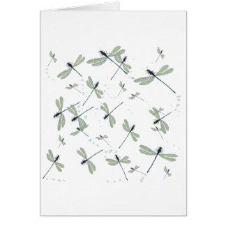 Cartão libélulas no sol
