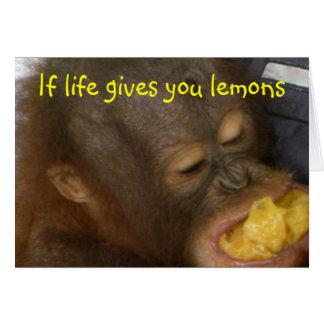 Cartão Limonada: se a vida lhe dá limões
