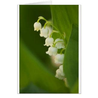 Cartão Lírio da flor do vale