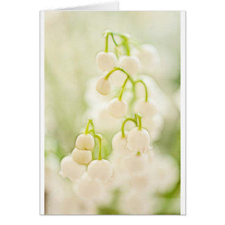 Cartão Lírio do esboço do grupo da flor do vale