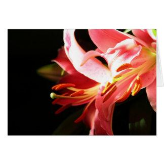 Cartão Lírios cor-de-rosa