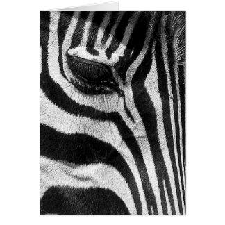 Cartão Listras da zebra