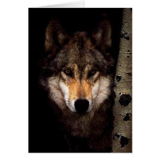 Cartão Lobo cinzento - lobo selvagem - lobo da cara -
