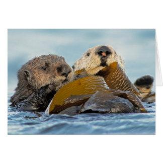 Cartão Lontras de mar de Califórnia na baía de Morro