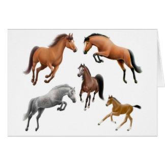 Cartão louco do cavalo