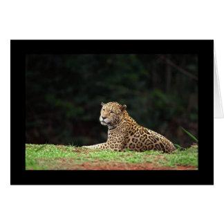 Cartão Lounging de Jaguar