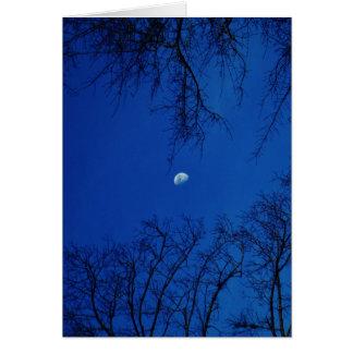 Cartão Lua cheia do inverno com árvores