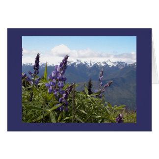 Cartão Lupine da montanha