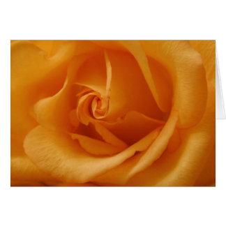 Cartão Luz - a laranja aumentou
