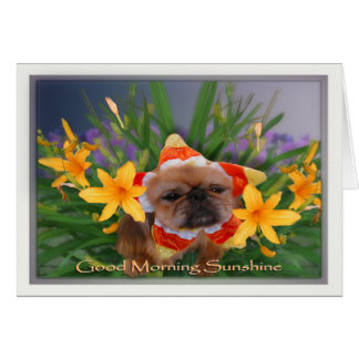 Cartão Luz do sol do bom dia