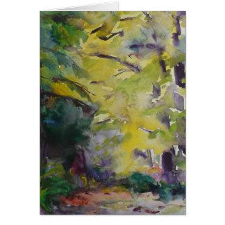 Cartão Luz solar em um trajeto de floresta pelo lago de
