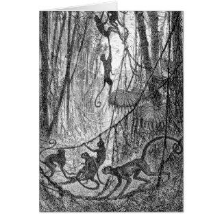 Cartão Macaco da selva dos macacos de aranha dos 1800s do