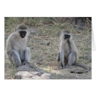Cartão Macacos azuis