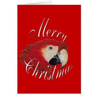 Cartão Macaw do Natal