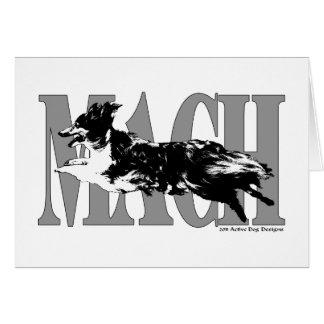 Cartão MACH Sheltie