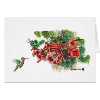 Cartão Madressilva do colibri