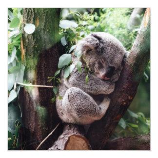 Cartão Magnético Urso de Koala bonito que relaxa em uma árvore