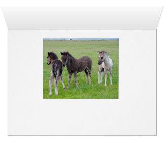 Cartão Mais cavalos abundante (horizontal)