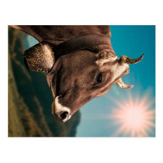 Cartão majestoso da vaca