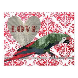 Cartão majestoso do damasco do amor do Macaw Cartão Postal