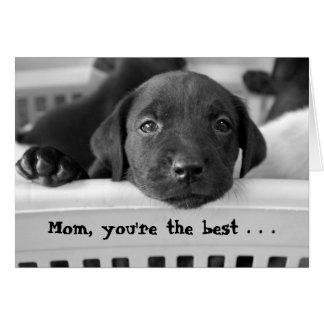 Cartão Mamã, você é o melhor…