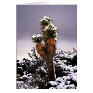 Cartão Mandioca na neve, montanha preta Henderson Nevada