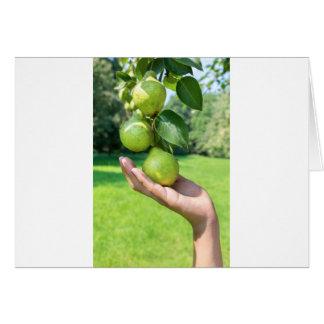 Cartão Mão que mostra o ramo com suspensão de peras