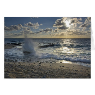 Cartão Mar das caraíbas, Cayman Islands.  Ondas deixando