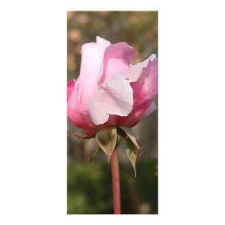 Cartão/marcador de cora da cremalheira da beleza 10.16 x 22.86cm panfleto