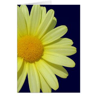 Cartão - margarida amarela no céu da meia-noite