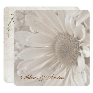 Cartão Margarida macia do casamento do Sepia