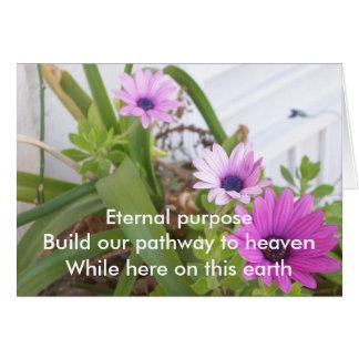 Cartão Margaridas eternos de Prpl da finalidade
