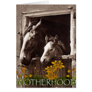 Cartão Maternidade
