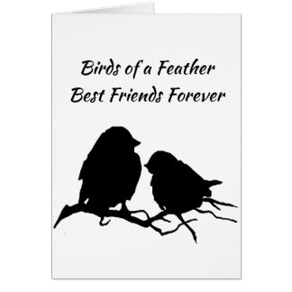 Cartão Melhores amigos do Birds of a Feather para sempre