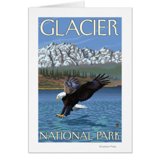 Cartão Mergulho da águia americana - parque nacional de