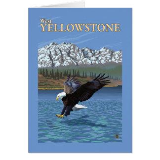 Cartão Mergulho da águia americana - Yellowstone