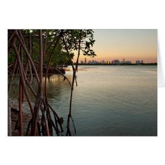 Cartão Miami e manguezais no por do sol