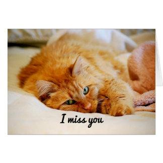 Cartão Mim senhorita Você, gato de racum de Maine da