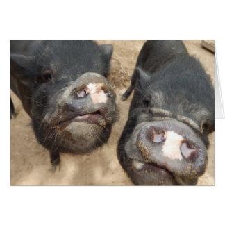 Cartão Mini porcos personalizados do preto dobro dos