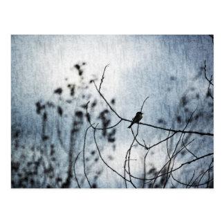 Cartão minúsculo da silhueta do pássaro