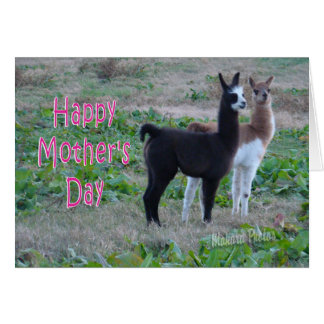 Cartão Miúdos do cartão-lama do dia das mães