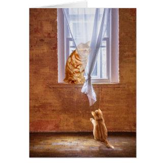 Cartão Modelo do gato do gatinho