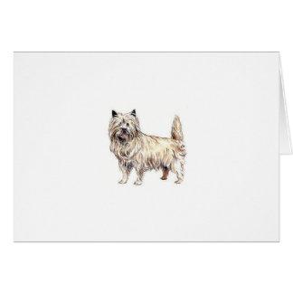 Cartão Monte de pedras Terrier
