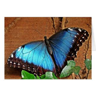 Cartão Morpho azul - borboleta
