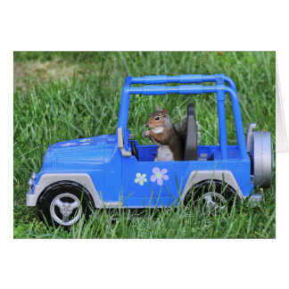 Cartão Motorista de Squirrelly